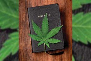 Wietblad op bijbel
