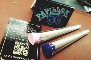 Voorgedraaide joint Coffeeshop Papillon